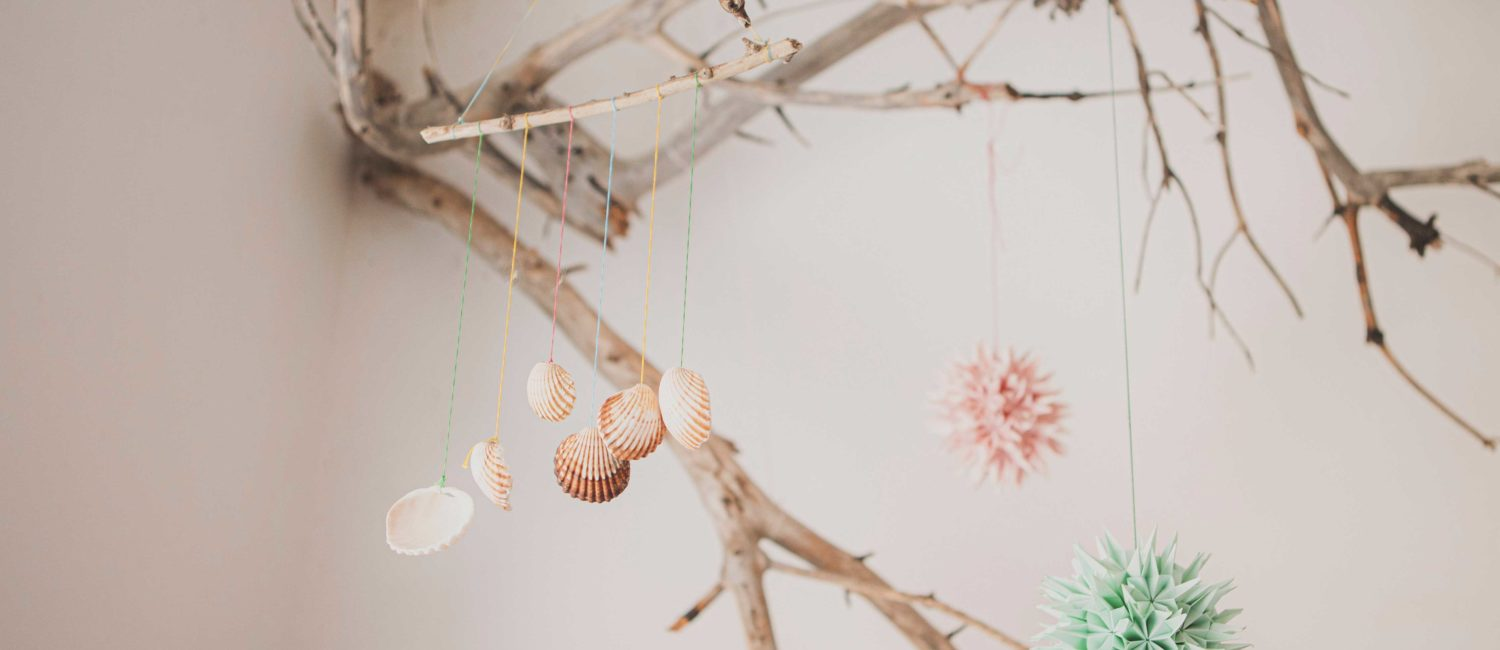 Shells hanging from branch.