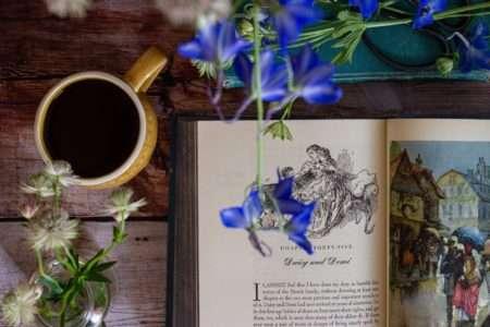 Little Women and blue flowers